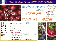 Cup of Excellence 2019  グアテマラ サンタ・イレーネ農園